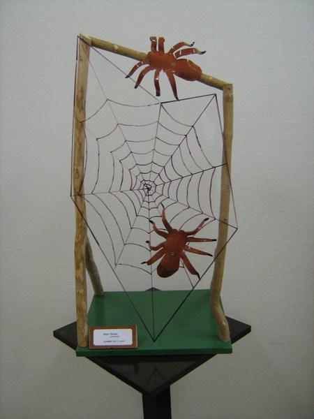 pavouci-sit-s-pavouky
